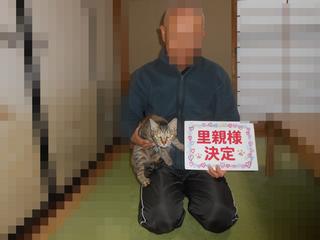 DSCN2500 henn.jpg