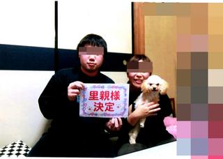 img011 プードル 白色_edited-1.jpg  henn